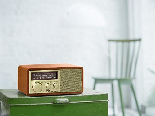 Sangean WR-11SE AM/FM Table Top Radio 40th Edition